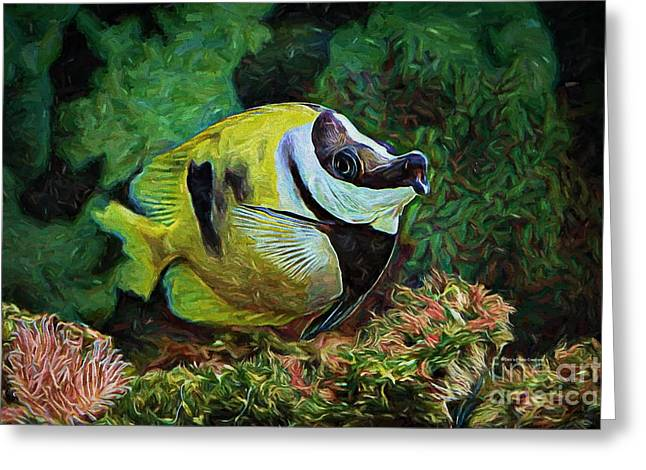 Deborah Greeting Cards - Indigo Fish Greeting Card by Deborah Benoit