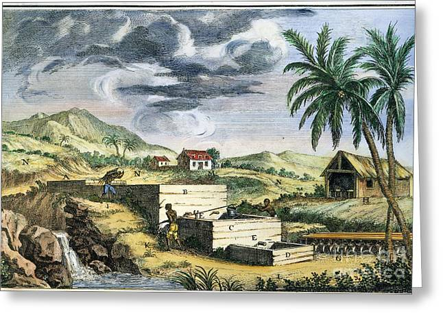 18th Century Greeting Cards - Indigo Plantation Greeting Card by Granger