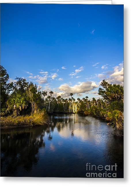 Park Scene Photographs Greeting Cards - Inlet Cove Greeting Card by Marvin Spates
