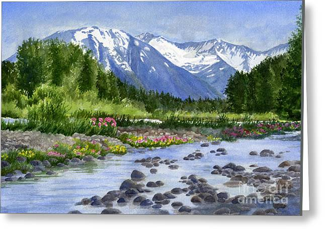 Inlet View From Glacier Creek Greeting Card by Sharon Freeman