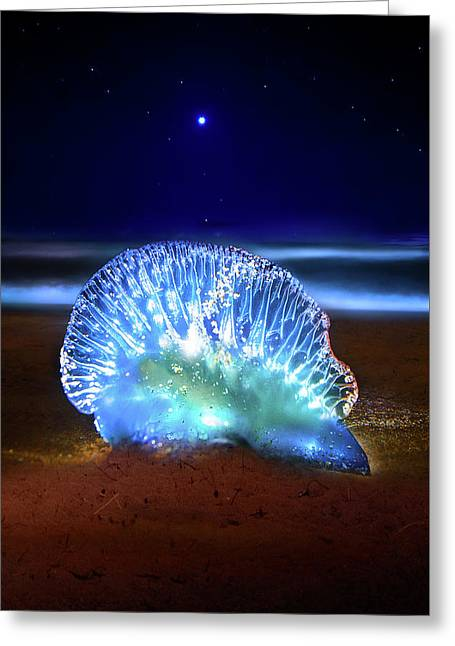 Inner Light Greeting Card by Mark Andrew Thomas