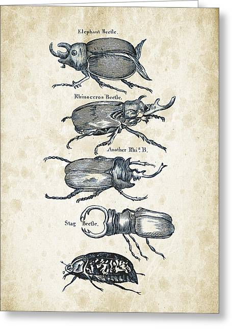 Insects - 1792 - 01 Greeting Card by Aged Pixel