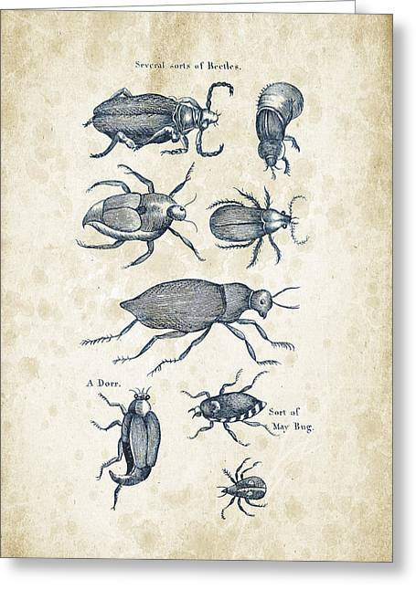 Insects - 1792 - 02 Greeting Card by Aged Pixel