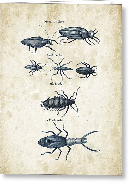 Beetle Greeting Cards - Insects - 1792 - 05 Greeting Card by Aged Pixel