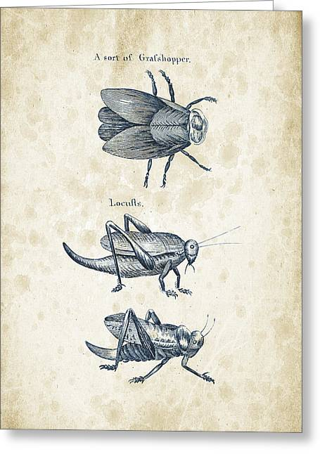 Insects - 1792 - 08 Greeting Card by Aged Pixel