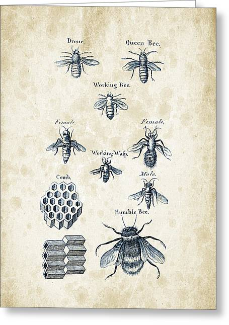 Bees Greeting Cards - Insects - 1792 - 14 Greeting Card by Aged Pixel