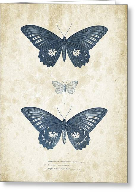 Vintage Books Greeting Cards - Insects - 1832 - 01 Greeting Card by Aged Pixel