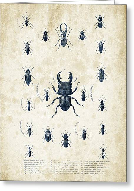 Vintage Books Greeting Cards - Insects - 1832 - 06 Greeting Card by Aged Pixel