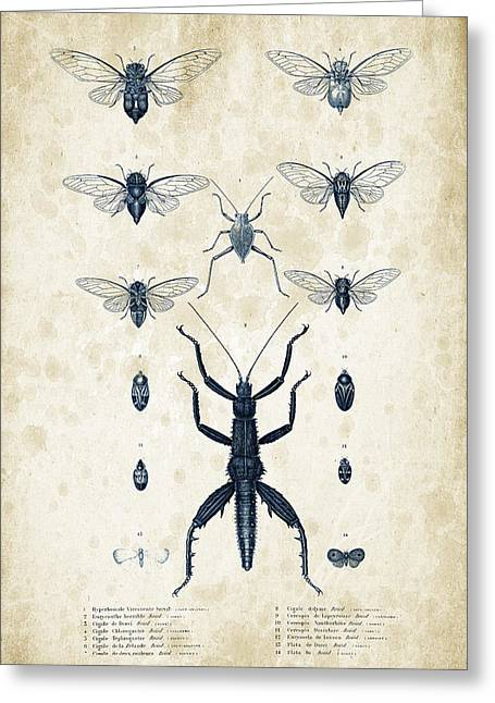 Vintage Books Greeting Cards - Insects - 1832 - 10 Greeting Card by Aged Pixel