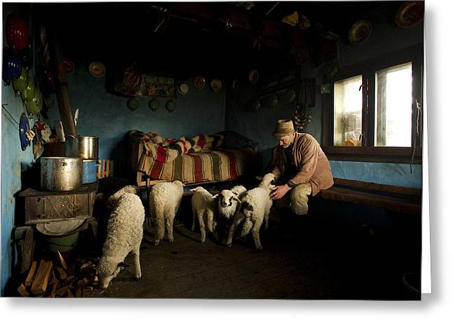 Documentary Photographs Greeting Cards - Inside His House Greeting Card by Mihnea Turcu