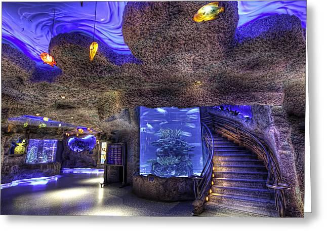 Menu Greeting Cards - Inside the Aquarium Greeting Card by Tim Stanley