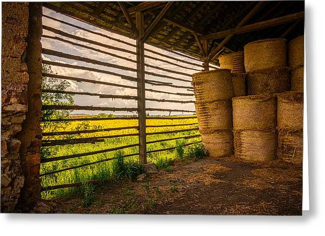 Wooden Building Greeting Cards - Inside the Barn Greeting Card by Andrew Proudlove