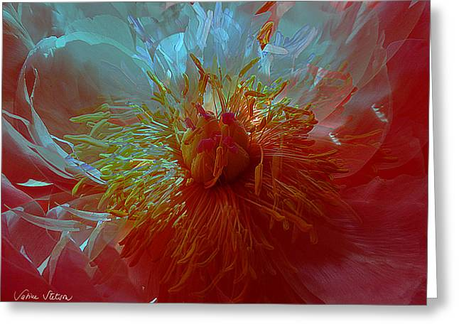 Inside The Heart Of A Peonie Greeting Card by Sabine Stetson