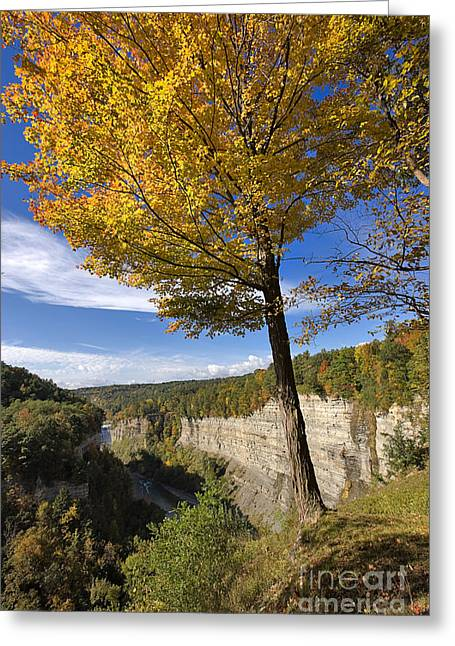 Inspiration Point Greeting Card by Louise Heusinkveld