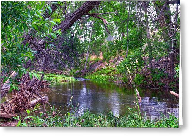 Granite Dells Reflections Greeting Cards - Inspiration Point Greeting Card by Thomas  Todd