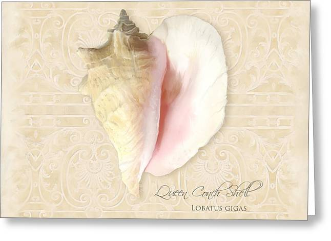 Inspired Coast I  - Queen Conch Shell Loratus Gigas Greeting Card by Audrey Jeanne Roberts