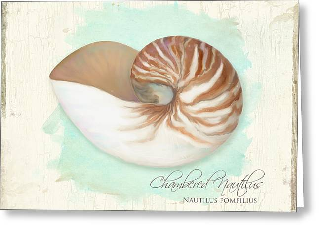 Tropical Island Greeting Cards - Inspired Coast V - Chambered Nautilus Shell on Board Greeting Card by Audrey Jeanne Roberts
