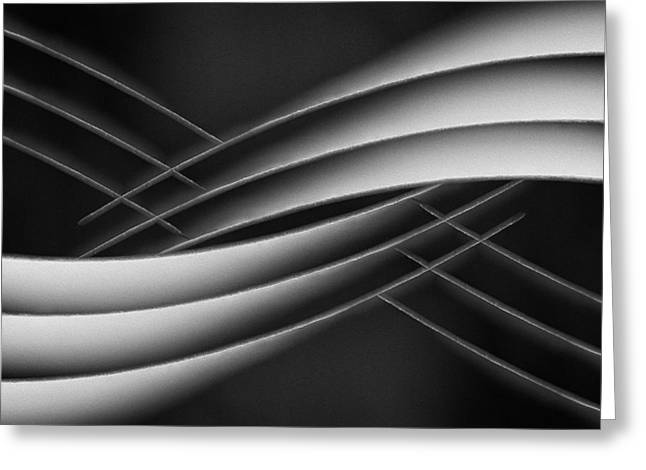 Monochrome Greeting Cards - Interlaced Greeting Card by Jutta Kerber