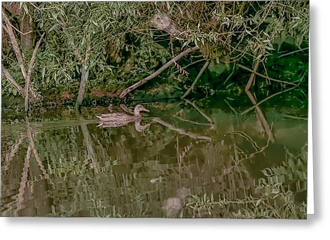 Reflections In River Greeting Cards - Into Cave 1 Greeting Card by Leif Sohlman