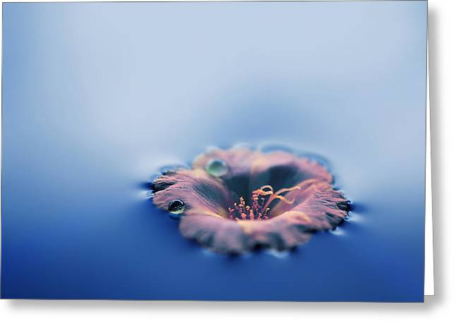 Puddle Paint Greeting Cards - Into the blue Greeting Card by Ashraful Arefin