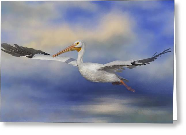 Seabirds Greeting Cards - Into The Clouds Greeting Card by Kim Hojnacki