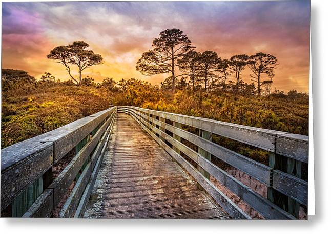 Into The Dunes Greeting Card by Debra and Dave Vanderlaan