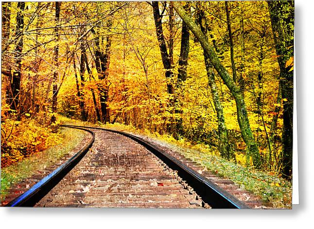 Autumn Photographs Greeting Cards - Into The Forest Greeting Card by Kathy Jennings