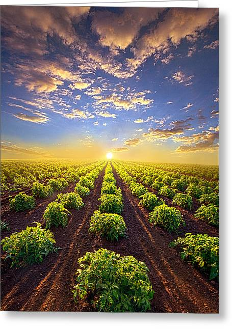 Crop Greeting Cards - Into The Future Greeting Card by Phil Koch