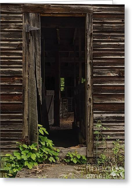 Historic Site Greeting Cards - Into the Hog Barn Greeting Card by Debra Fedchin