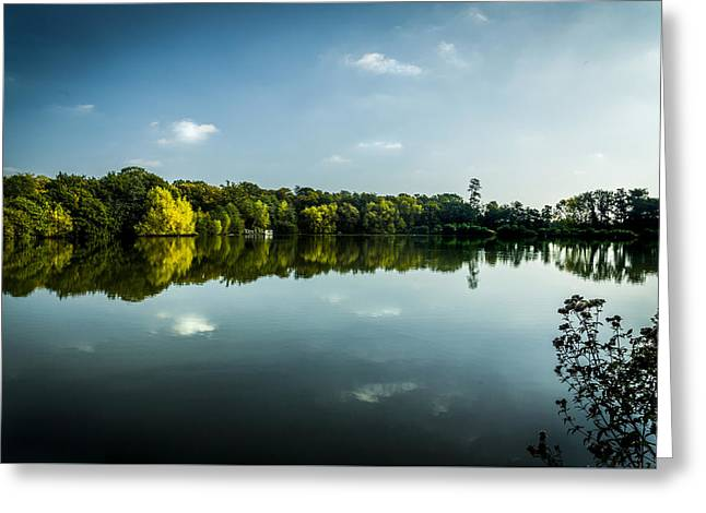Reflecting Water Greeting Cards - Into the light Greeting Card by Andy Mayes