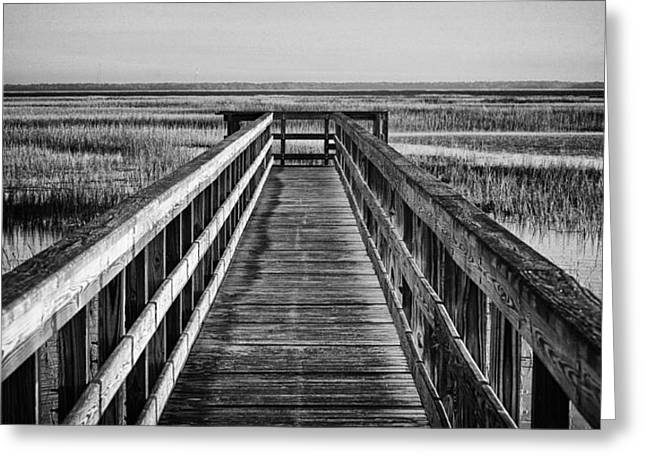 Beaufort County Greeting Cards - Into The Marsh  Greeting Card by Phill  Doherty