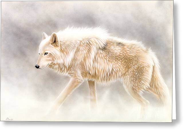 White Paintings Greeting Cards - Into The Mist Greeting Card by Sandi Baker