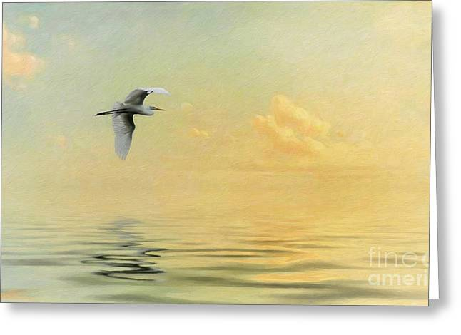 Sea Birds Greeting Cards - Into the Sunset Greeting Card by Priscilla Burgers
