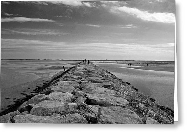 Cape Cod Mass Greeting Cards - Into the water Greeting Card by Conor McLaughlin