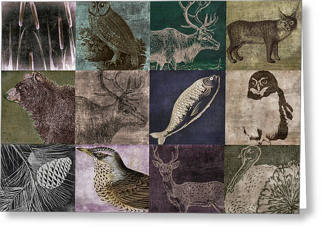 Mancave Greeting Cards - Into the Woods Greeting Card by Mindy Sommers