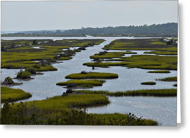 Snead Greeting Cards - IntraCoastal Waterway at Sneads Ferry NC Greeting Card by Carol Costello