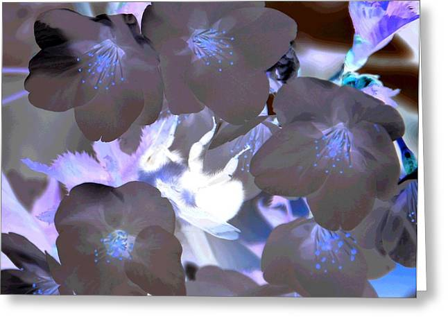 Inverted Color Greeting Cards - Inverted colors of a bumle bee Greeting Card by Jennifer Wick