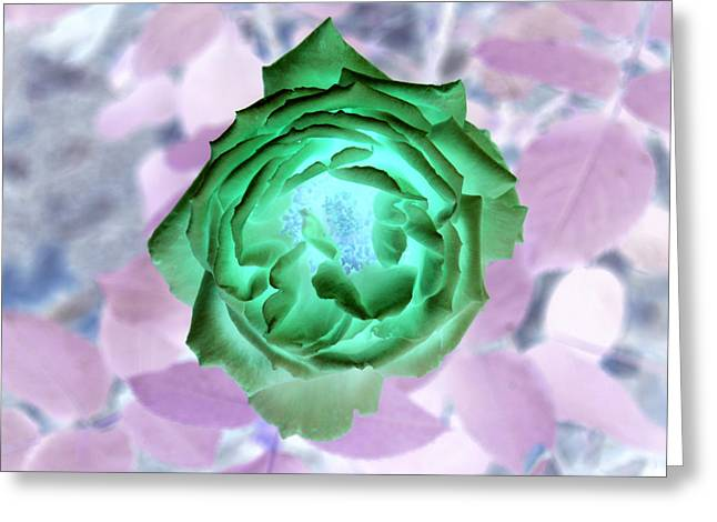 Inverted Greeting Cards - Inverted Rose II Greeting Card by James Granberry
