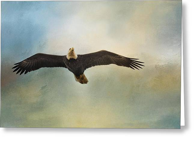 Eagles In Storms. Bald Eagles Greeting Cards - Inviting The Sun Greeting Card by Jai Johnson