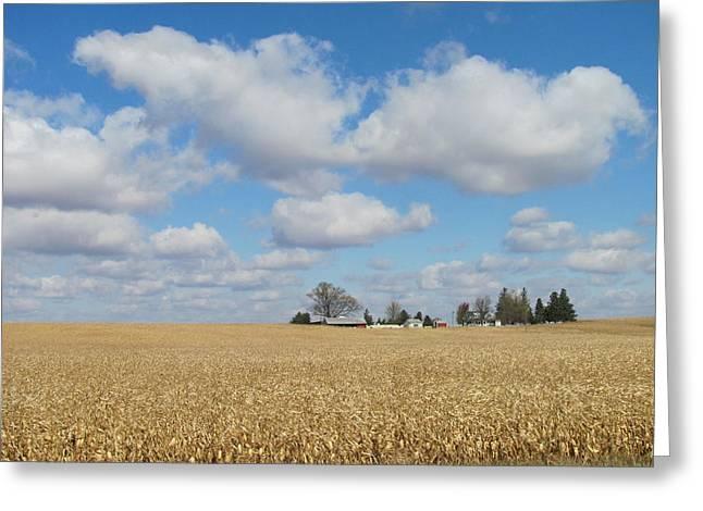 Field. Cloud Greeting Cards - Iowa 3 Greeting Card by Anita Burgermeister