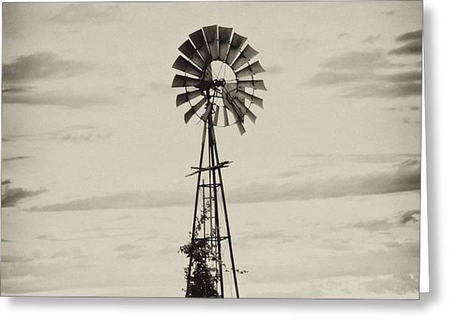 Iowa Windmill In a Corn Field Greeting Card by Wilma  Birdwell