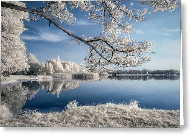 Infrared Greeting Cards - Irenkowo Greeting Card by Piotr Krol (bax)
