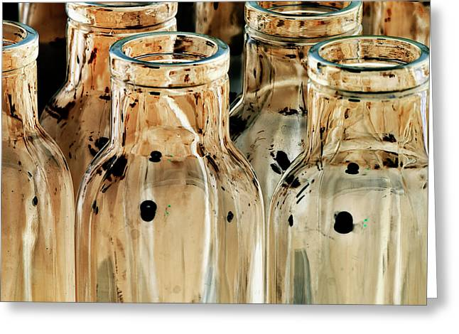 Fine Bottle Greeting Cards - Iridescent bottle Parade Greeting Card by Heiko Koehrer-Wagner