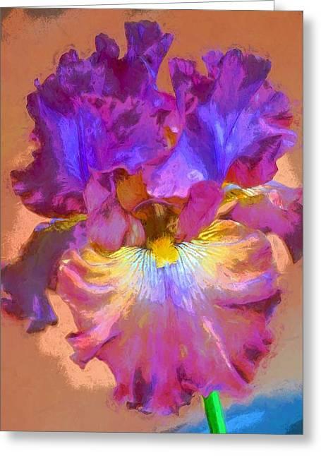 Spring Bulbs Greeting Cards - Iris 68 Greeting Card by Pamela Cooper