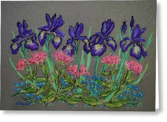 Iris Pastels Greeting Cards - Iris and Pinks Greeting Card by Collette Hurst