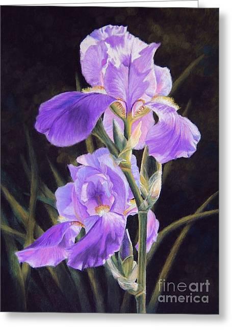 Iris Pastels Greeting Cards - Iris Duet Greeting Card by Tamara Oppel