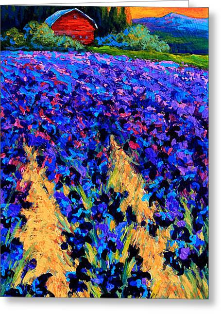 Landscape. Scenic Paintings Greeting Cards - Iris Farm Greeting Card by Marion Rose