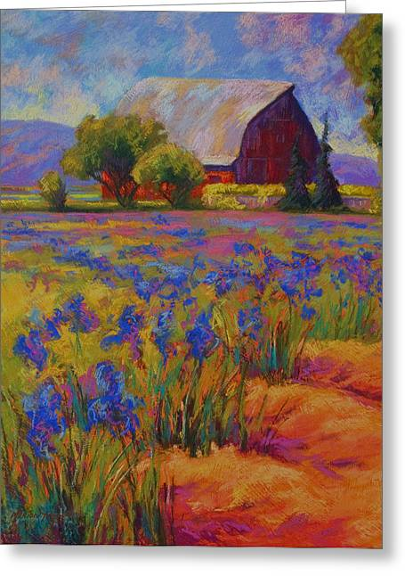 Vineyard Greeting Cards - Iris Field Greeting Card by Marion Rose