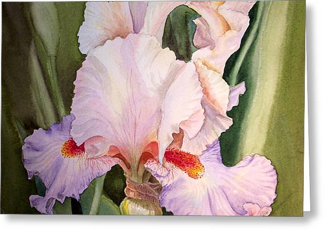 Valentine Gift Ideas Greeting Cards - Iris Flower Greeting Card by Irina Sztukowski