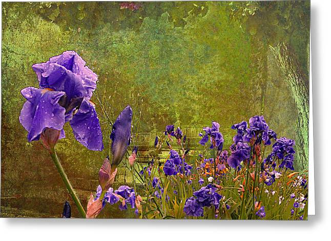 Iris Garden Greeting Card by Jeff Burgess